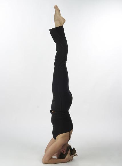 Sirsasana Yoga Pose